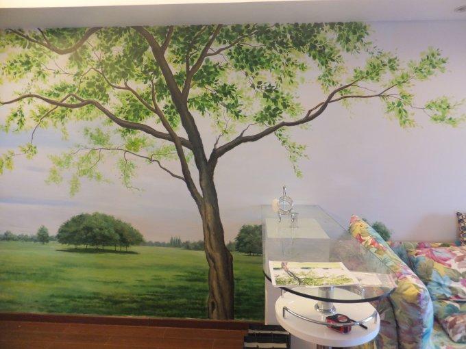 家装案例-长沙墙绘,长沙手绘墙,长沙壁画,长沙墙绘—