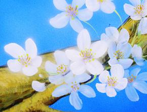 碧涛阁会所彩绘《樱花烂漫》