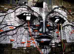 墙绘涂鸦之法国墙绘大师的作品